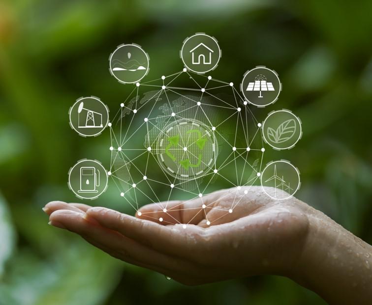 NTT東日本とインフィック、IoTで独居高齢者を見守り (日経電子版)